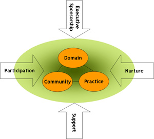 introduction to aspects of community practice For example, a community psychologist might (1) create and evaluate an array of programs and policies which help people control the stressful aspects of community and organizational environments (2) assess the needs of a community and teach its members how to recognize an incipient problem and deal with it before it becomes.