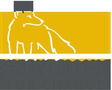 Storytelling for change logo