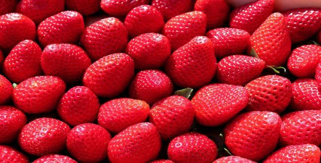 strawberry-tips
